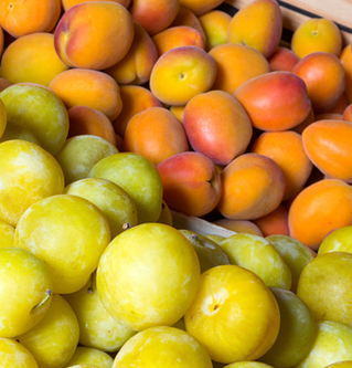 Plums and fresh apricots